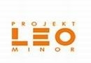 Projekt Leo Minor Studio Architektury Wnętrz